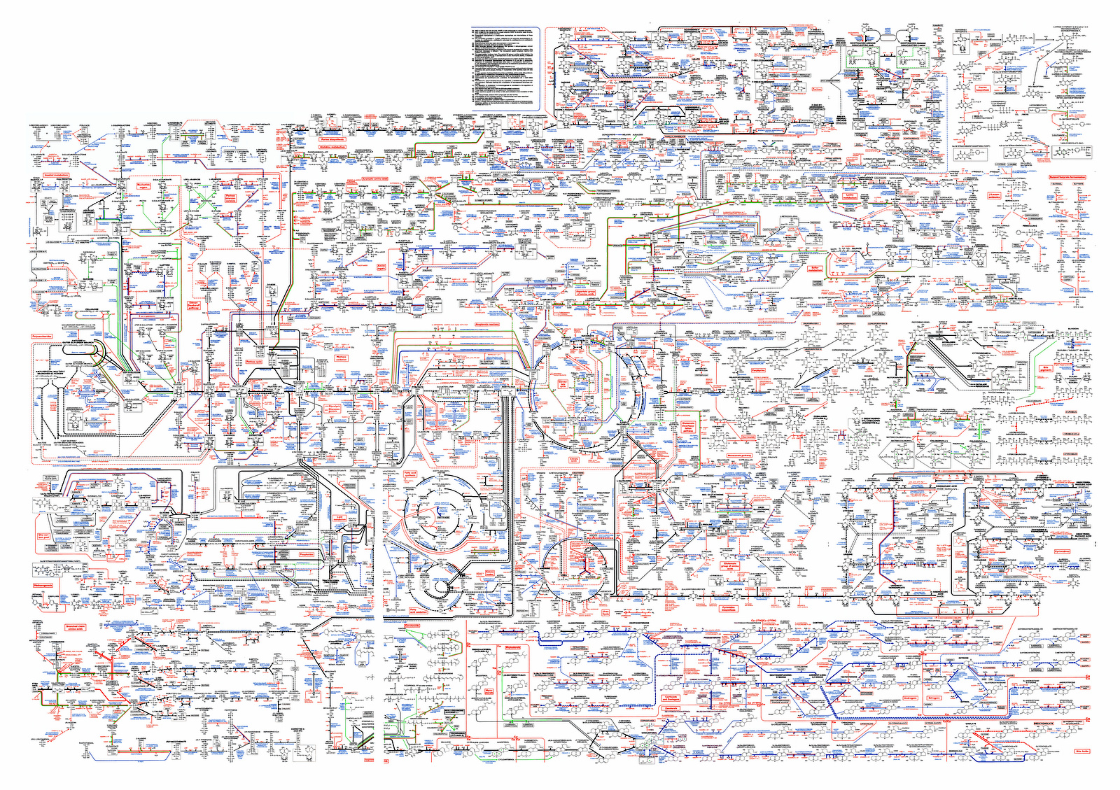 Cell And Molecular Biology What We Know How Found It Second Pin By Electronic Products Magazine On Circuit Diagrams Pinterest Edition An Annotated Itext