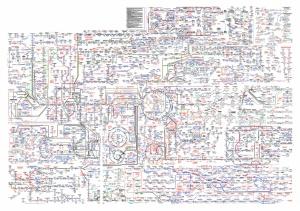 metabolic pathways map
