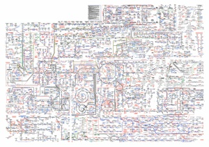 Metabolic_Pathways_for_plotter_landscape_quantized.png