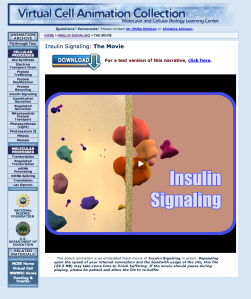 VCAC  Cellular Processes  Insulin Signaling  The Movie