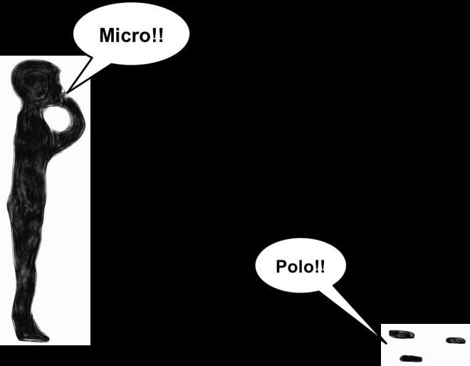 Micro polo
