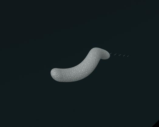 bacteria gif