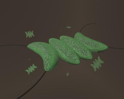 illustrated bacteria, microbiology, microalgae