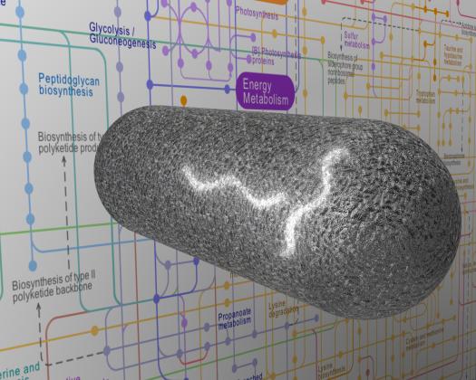 animated bacteria, bioenergy, synthetic biology graphic
